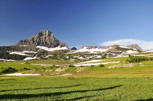 Glaciers National Park Grass mountain snow