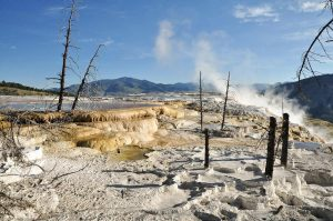 Mammoth Hot Springs Yellowstone steam sulfur