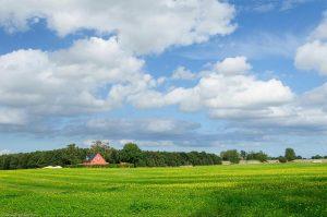 Agriculture Farm Field House Denmark