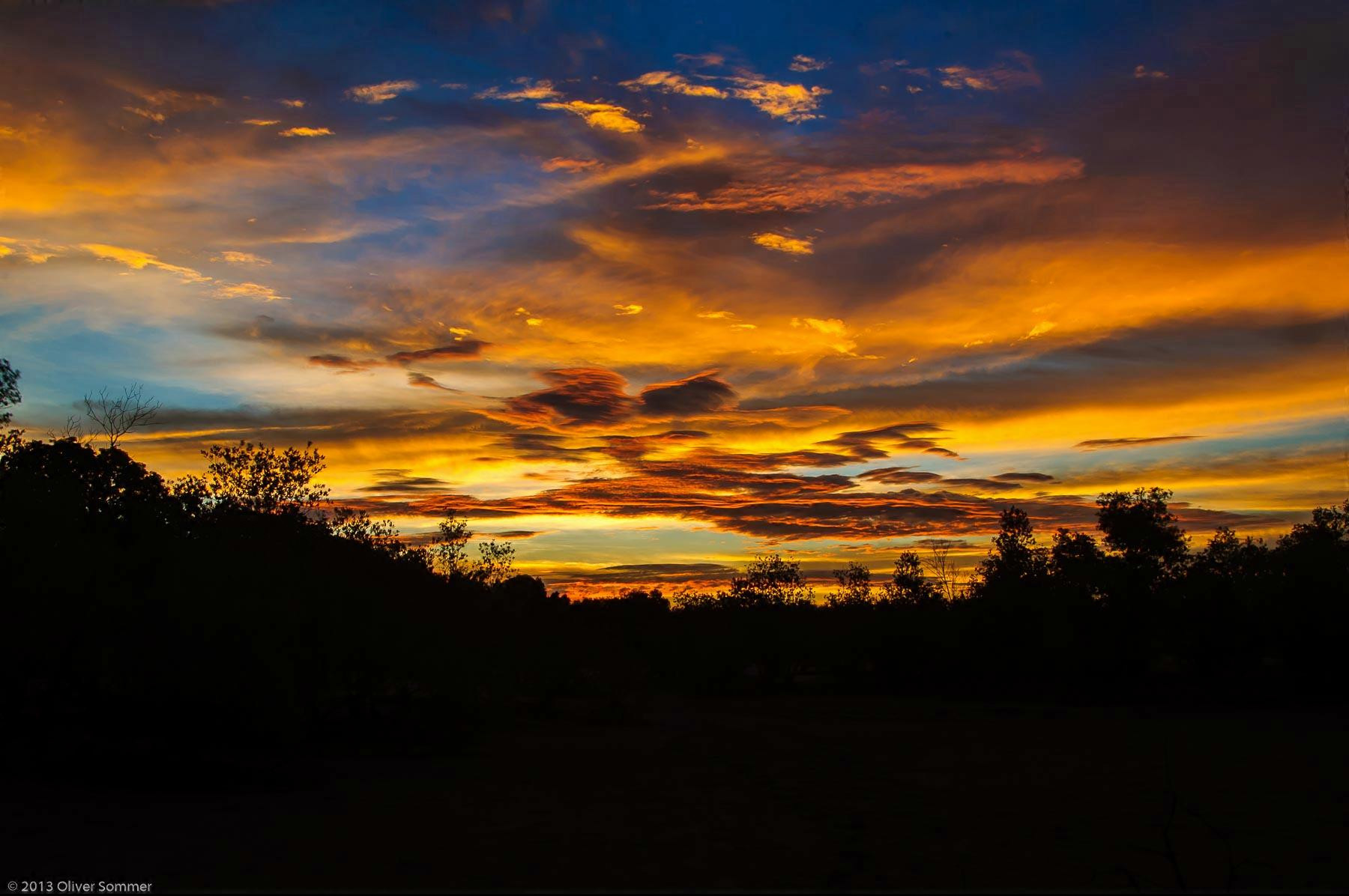 Madagascar Sunset Mangroves Tropical