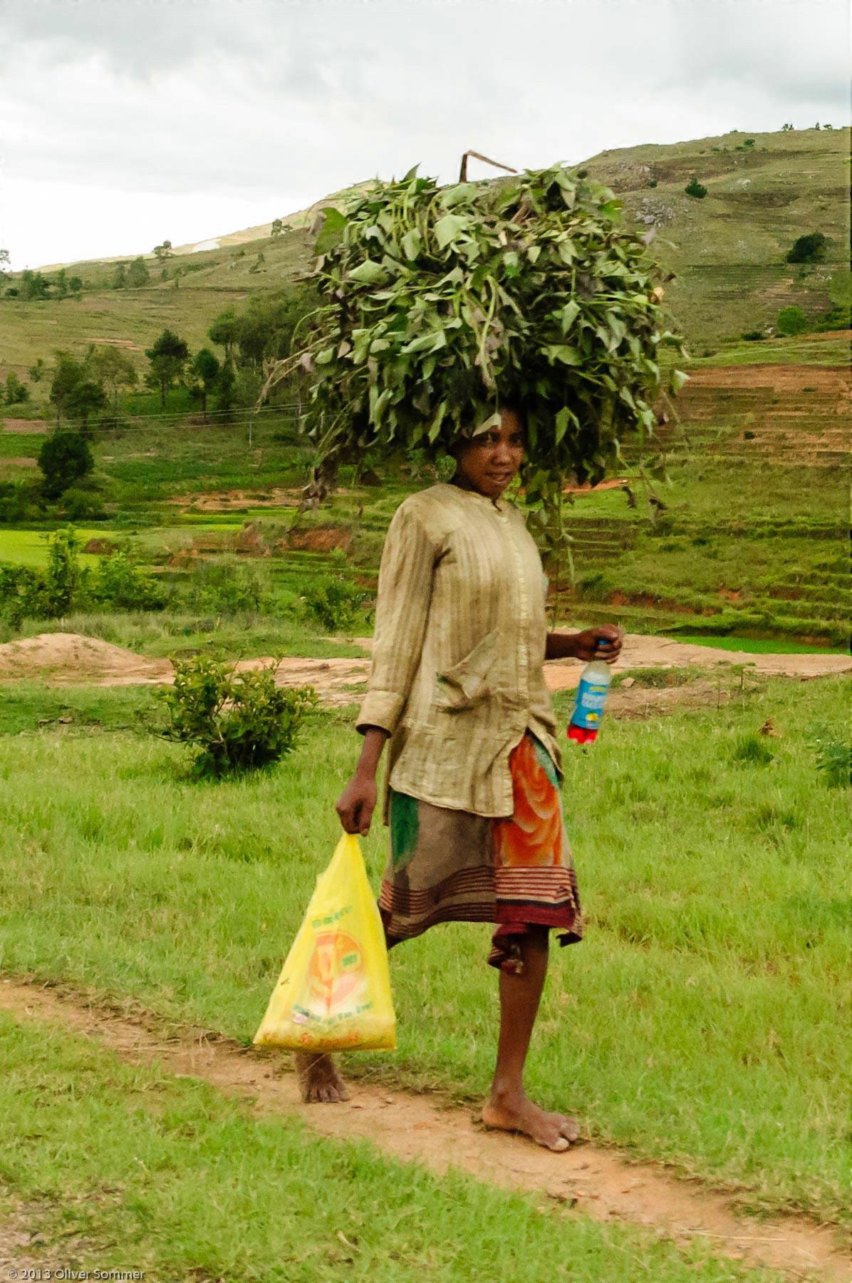 Carrying, Female, Food, Head, People, Person, Plant, Portrait, Woman, Women, human